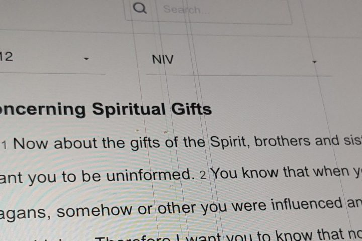 Many Gifts, One Spirit (By Rev Anthony Lee)